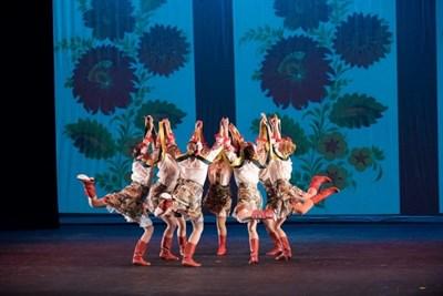 World Dance Showcase picture
