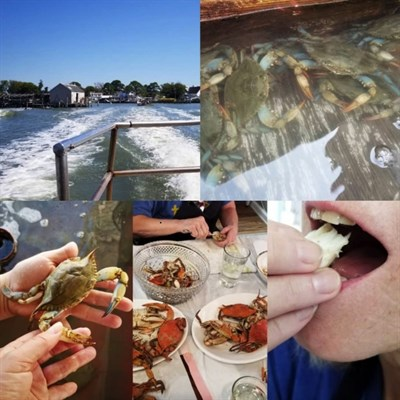 soft shell crabs, picking crabs, eating crabs, boat ride