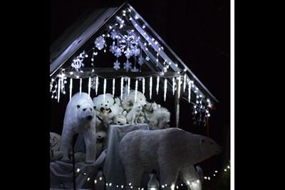 Polar Bear display in holiday lights
