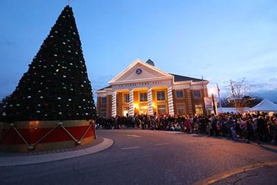 Christmas Tree at Town Hall