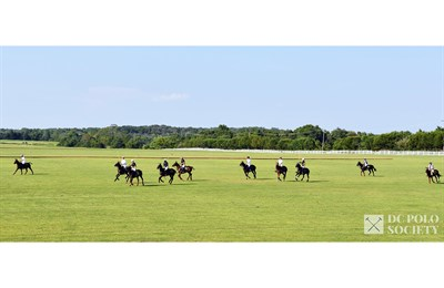 Polo Field with Players