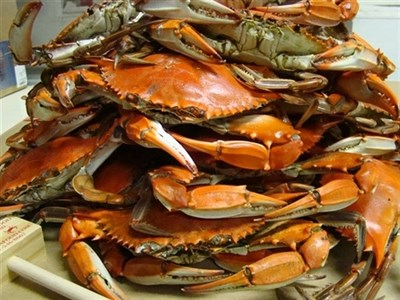 Crabs at Linton's Seafood