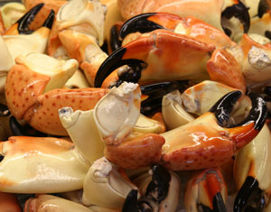 Stone crab at The Rockfish Restaurant & Raw Bar