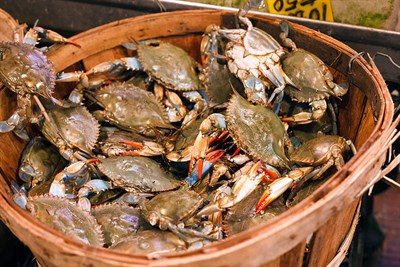 Bushel of crabs at Stoney's Seafood House-Prince Frederick