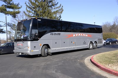 Avalon Tour & Charter.