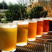 Brews lined up at the Ruddy Duck