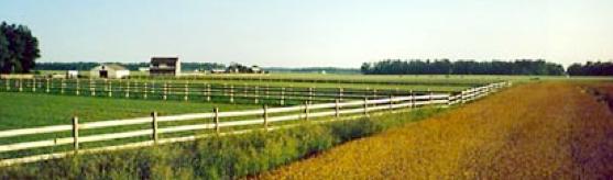 Idylwild Farm