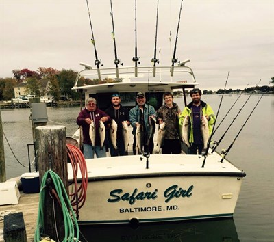 Safari Girl Charters