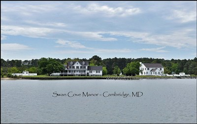 Photo Credit: Swan Cove Manor