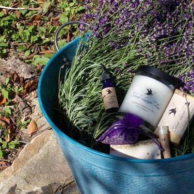 Soleado Lavender Farm