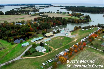 Buzz's Marina aerial view
