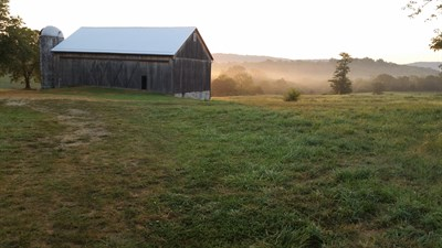 Photo Credit: Antietam Creek Vineyards