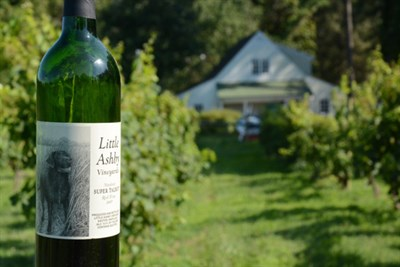 Photo Credit: Little Ashby Vineyards