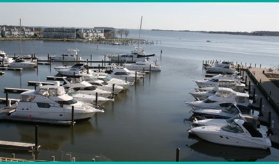 Wells Cove Marina aerial view