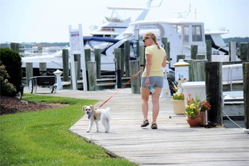 woman walking dog at Mears Point Marina