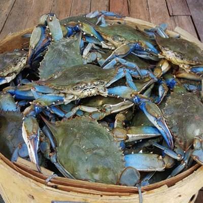 Photo Credit: Cameron's Seafood
