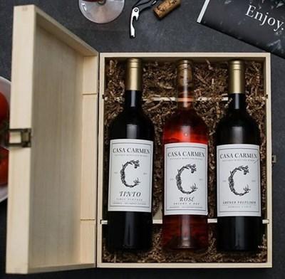 Casa Carmen Wines