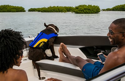 Couple with their dog relaxing on a boat